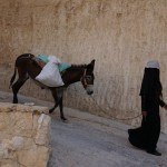 Bedouin Woman with Donkey