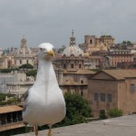 A bird's eye view of Rome